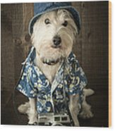 Vacation Dog Wood Print by Edward Fielding