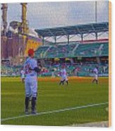 Victory Field Catcher 1 Wood Print by David Haskett