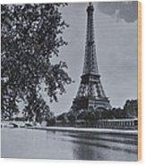 Vintage Paris Wood Print by Georgia Fowler