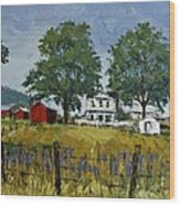 Virginia Highlands Farm Wood Print by Peter Muzyka