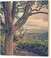 Waihee Ridge Trail Maui Hawaii Wood Print by Edward Fielding