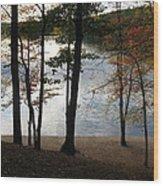 Walden Pond In Autumn Wood Print by Sheila Savage