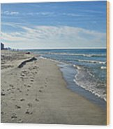 Walking The Beach Wood Print by Sandy Keeton