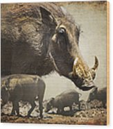 Warthog Profile Wood Print by Ronel Broderick