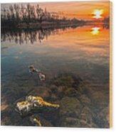 Watching Sunset Wood Print by Davorin Mance