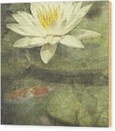 Water Lily Wood Print by Scott Norris