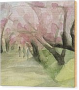 Watercolor Painting Of Cherry Blossom Trees In Central Park Nyc Wood Print by Beverly Brown