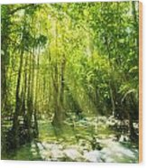 Waterfall In Rainforest Wood Print by Atiketta Sangasaeng