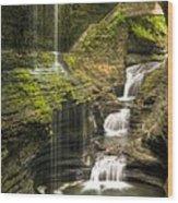 Watkins Glen Falls Wood Print by Anthony Sacco