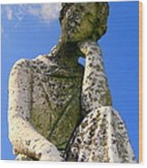 Weathered Woman Wood Print by Ed Weidman