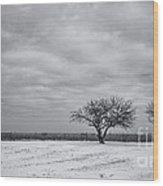 Weeping Souls Of Winter Desires Wood Print by Evelina Kremsdorf