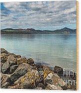 Welsh Coast Wood Print by Adrian Evans