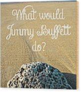 What Would Jimmy Buffett Do Wood Print by Edward Fielding