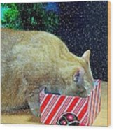 Whiskey's Present Wood Print by Diana Angstadt