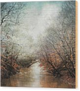 Whisper Of Winter Wood Print by Jai Johnson