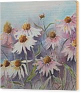 White And Pink Coneflowers Wood Print by Patsy Sharpe