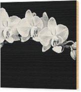 White Orchids Monochrome Wood Print by Adam Romanowicz