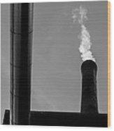 White Smoke Wood Print by Bob Orsillo