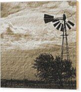 Wind Blown Wood Print by Tony Grider