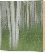 Wind In The Aspen Wood Print by Nancy Myer
