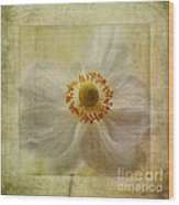 Windflower Textures Wood Print by John Edwards