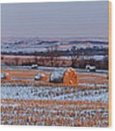 Winter Bales Wood Print by Scott Bean
