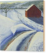 Winter Blues Wood Print by Garry McMichael
