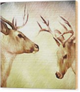 Winter Deer Wood Print by Bob Orsillo
