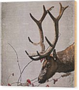 Winter King Wood Print by Julie Magers Soulen