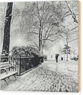 Winter Night - Snow - Madison Square Park - New York City Wood Print by Vivienne Gucwa