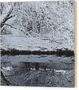 Winter Reflections Wood Print by Steven Milner