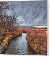 Winter Storm Over Owens River Wood Print by Cat Connor