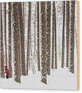 Winter Frolic Wood Print by Mary Amerman
