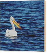 Wisconsin Pelican Wood Print by Thomas Young