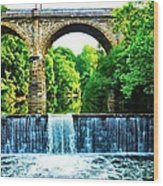 Wissahickon Falls Wood Print by Bill Cannon