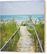 Wooden Walkway Over Dunes At Beach Wood Print by Elena Elisseeva