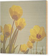 Yellow Tulips Wood Print by Diana Kraleva