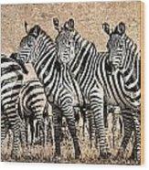 Zebra Herd Rock Texture Blend Wood Print by Mike Gaudaur