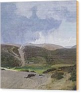 Scandinavian Landscape  Wood Print by Janus la Cour