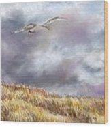 Seagull Flying Over Dunes Wood Print by Jack Skinner