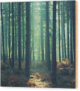 The Green Ray Wood Print by Paul Grand