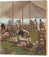 The Sheep Shearing Match Wood Print by Eyre Crowe