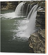 0804-0013 Falling Water Falls 4 Wood Print by Randy Forrester