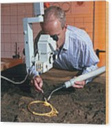 Archaeologist Cleaning A Golden Celtic Necklace Wood Print by Volker Steger