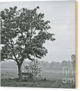 August In England Wood Print by Andy Smy