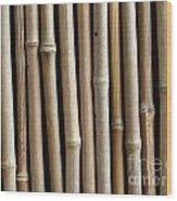Bamboo Fence Wood Print by Yali Shi