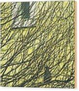 Branch Office Wood Print by Joe Jake Pratt