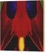 Bug Wood Print by Christopher Gaston