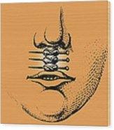 Cleft Lip Wood Print by Mehau Kulyk
