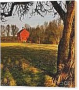 Country Life Wood Print by Susan Candelario